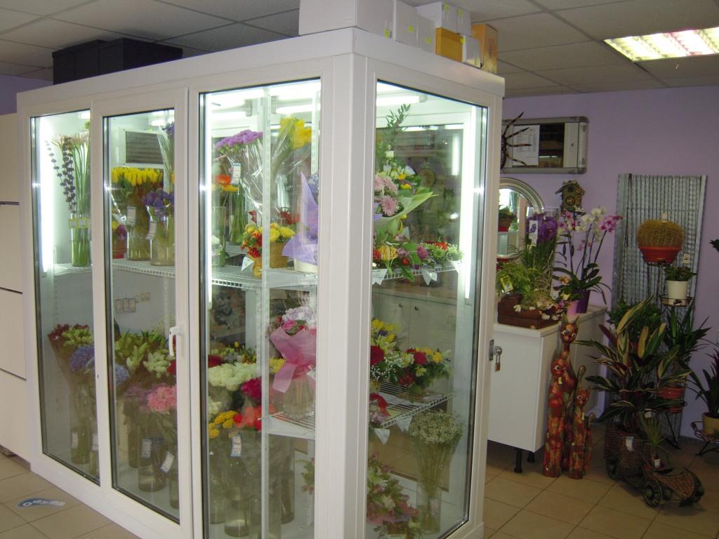 Как сделать витрину-холодильник для цветов